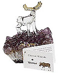 Crystal Moose
